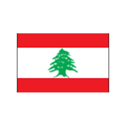سفارة الجمهورية اللبنانية في تونس